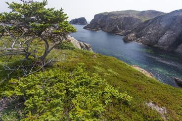 ocean inlet, Twillingate Island, Newfoundland