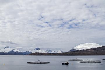 Fischzuchtanlage im Fjord