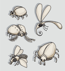 Set of different weird insects and bugs