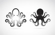 Vector image of an octopus on white background. - 69744437
