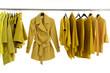 Yellow jacket on Hangers