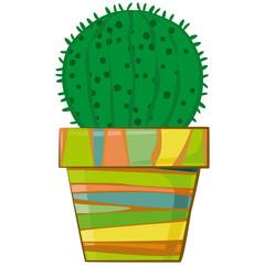 Cactus in a flowerpot. Succulent plant in pot