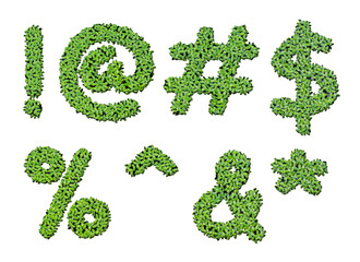 Collection of alphabet letter symbols from duckweed isolated on