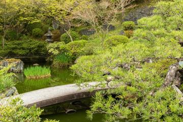 Scenery Japanese garden