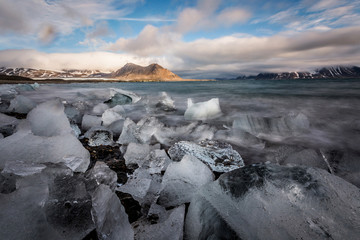 Ice on the Arctic beach - landscape