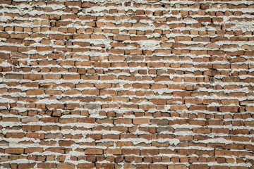 Old Brick Wall with Extruded Mortar