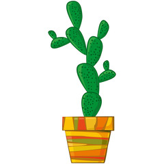 Succulent plant in pot. Cactus in a flowerpot