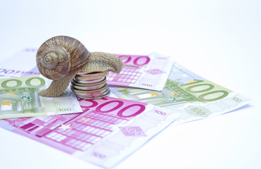 Snail on moneys