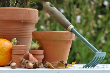 nettoyage d'automne au jardin