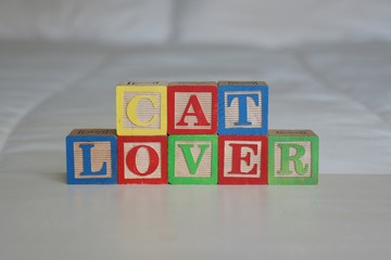 """Cat Lover"" spelled out in building blocks"