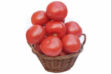 Large tomatoes in the basket