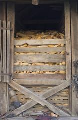 Corn in authentic barn