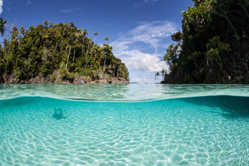 Tropical Islands and Shallow Water