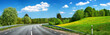Asphalt road and dandelion field - 69770458