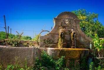 old garden fountain