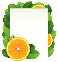 Orange slices and leaves
