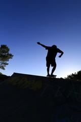 Skate, skateboard