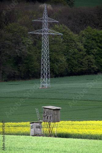 canvas print picture Rapsfeld mit Hochsitzen und Strommast