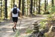 Signal roadblocks for mountanieer and hikers in the forest.
