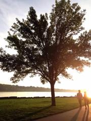 couple walking by lake