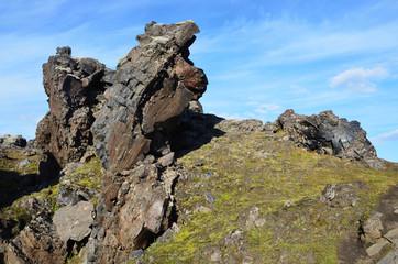 Исландия, вулканическая лава, поросшая мхом