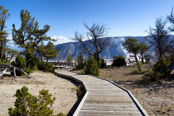 Pathway to Hot Springs in Yellowstone National Park