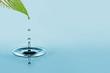 water drop - 69791647
