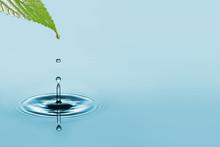 """Постер, картина, фотообои """"water drop"""""""