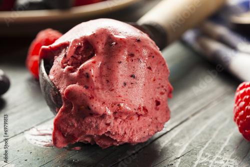 Homemade Organic Berry Sorbet Ice Cream