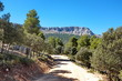 Route dans la montagne