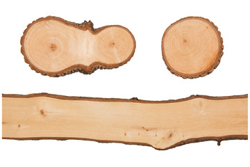 Texture of wood closeup. Object isolated for design