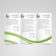 Brochure modern green design template
