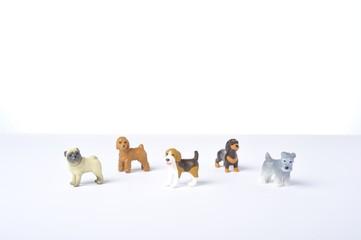 たくさんの犬達