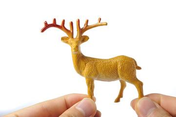 鹿を持っている手