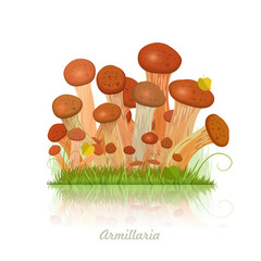 Edible mushroom armillaria for you design