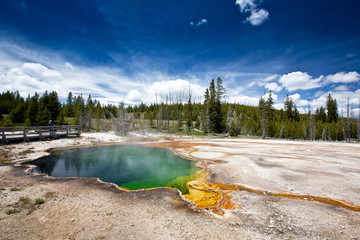 USA - Yellowstone NP