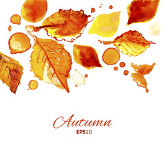 Autumn watercolor top oriented decorative illustration