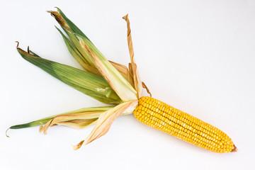 Corn ear with leaf