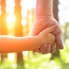 Close-up hands, an adult holding a child's hand.