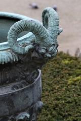 Versailles Palace - Ram head planter handle