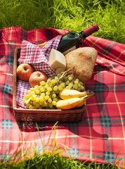 Picnic. Light brown style