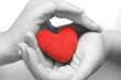 Obrazy na płótnie, fototapety, zdjęcia, fotoobrazy drukowane : Heart in palms (BW)