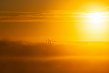 Wind turbines in misty morning