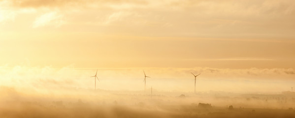 Wind turbines in morning landscape