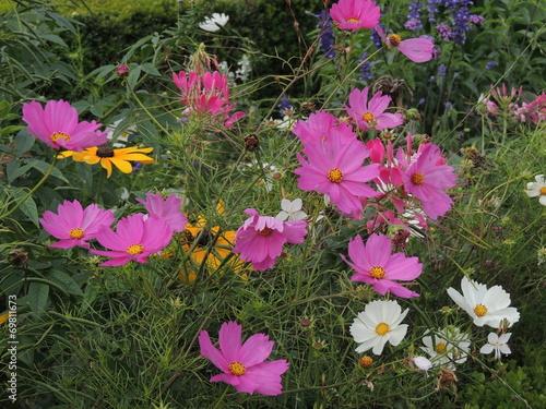 canvas print picture Flores