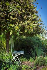 Stuhl unterm Baum im Garten