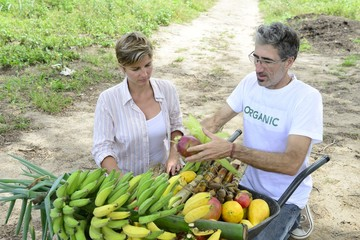 Customer buying direct from local farmer