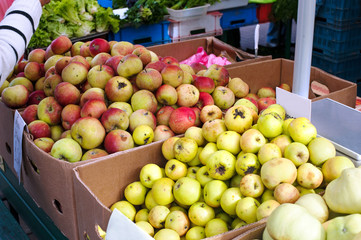 Plenty of ripe apples in cardboard crates in the market.