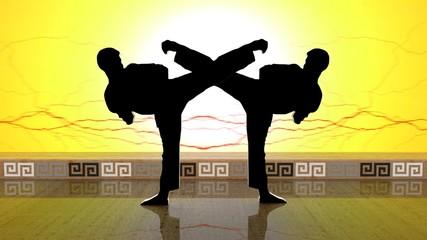 Black Karate MIRROR lV