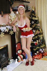 Santa's Christmas helper with traditional mince pies